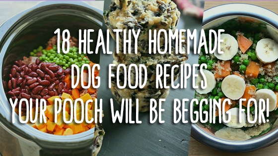 18 healthy homemade dog food recipes your pooch will be begging for check out these 18 mouth watering homemade dog food recipes your canine friend will absolutely love forumfinder